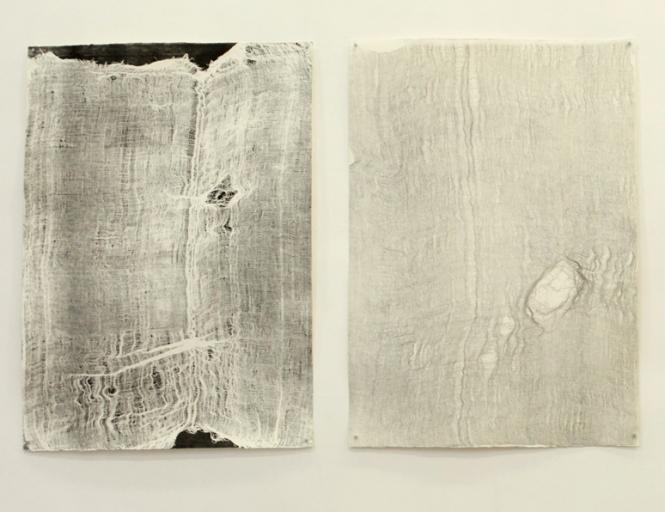 Sem titulo (Pele), 2013, Maria Laet