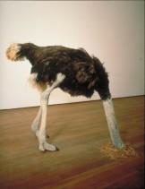 Maurizio Cattelan, Ostrich (1997). Foto: Galerie Perrotin, Paris
